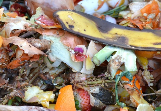 Everything You Need To Know About Composting This Spring!