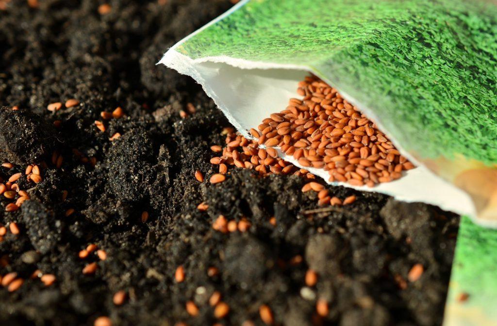 spring composting