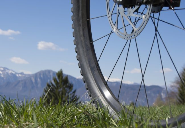 Pick Up Your Bike Go Bicycling This Summer For A Healthier Body