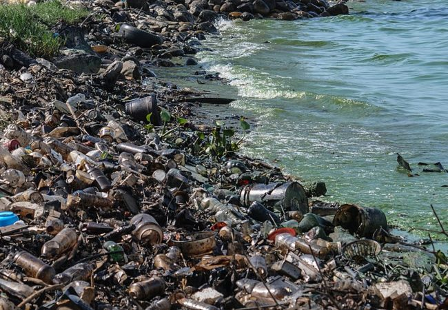 Over 200 Nations Pledge to Clamp Down on Plastic Waste in Oceans